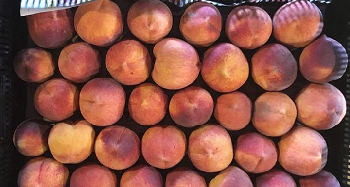 Cochise County peaches from Pivot Produce